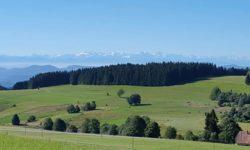 Umgebung Herrischried