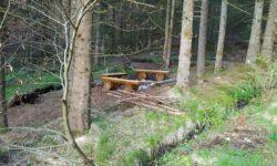 Unser Grillplatz im Wald